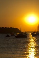 Sunset 2 (Paulfeb282) Tags: paulfeb282 paulcoxon paul coxon dorset sandbanks beach sunrise sunset sea front sunny day