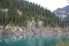 KAINDY LAKE (mauro gambini) Tags: kazakhstan kaindylake sprucetrees pecci deadtrees