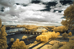 La promenade du Bout-du-Monde (Lolo_) Tags: infrared ir angers maine loire pont verdun promenade bout monde world end 2016 bridge river rivire jardin arbres trees infrarouge ville city anjou france