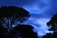 Italian nights (Rainer D) Tags: 2016 gargnano lombardia italien