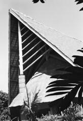 Sheraton Deva (robinguymer) Tags: newcaledonia caffenol nikonfe2 film bw roof