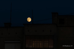 Moon over the roof (Milen Mladenov) Tags: 2016 august bulgaria d3200 moon moonview nikon block city fullmoon moonovercity summer
