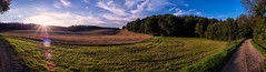 another 180 panorama (Florian Grundstein) Tags: grundstein florian panorama sky landscape field trees sun flares lensflares grass clouds mft omd olympus pro 1240