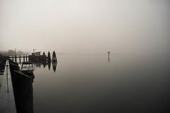 A Bodega Bay morning (Marcosari) Tags: bayarea bodegabay fog landscape sonya7 zuiko24mm28 manualfocus mirrorless a7 sony foggymorning