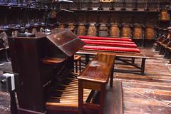 Catedral de vila - rgano Epstola (Buxtejor) Tags: rgano organ orgue orgel vila