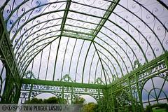 PLW_5588 (Laszlo Perger) Tags: wien vienna sterreich austria blumengarten hirschstetten flowergarden