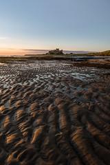 Across the shore (Aidan Mincher) Tags: bamburghcastle bamburgh castle beach sand shade light sunrise nothumberland northeast uk england shore ukeastcoast coast canon5dmk3 landscape