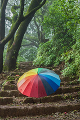 Matheran-5290 (Satish Chelluri) Tags: satishchelluri satishchelluriphotography matheran maharastra umbrella mansoon