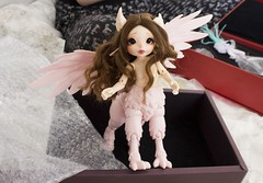 Hippogriff arrival (~Akara~) Tags: bjd ball jointed doll dolls fairyland fairy land fl realfee real fee rlf rus fairyline line art mari custom faceup face up mod modded lips centaur box opening arrival