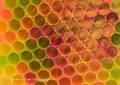 Fall Circles (Roberta Smith 2010) Tags: abstract colorful straws