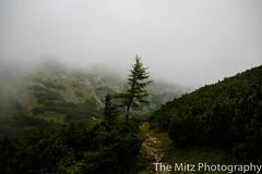 IMG_3420 (The Mitz Photography) Tags: gams grünersee hochschwab mariazell maryclan murmerl mädels nebel pilgern sommer steinbock wandern