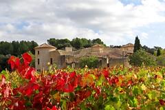 Dame Laure dans ses vignes (GCau) Tags: gecau france provence villelaure chateau vaucluse vignes automne autumn