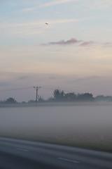 IMG_2066 (izagajewska) Tags: 30km narowerze poczatekjesieni wkolodomu komorow podkowa zalew wschod