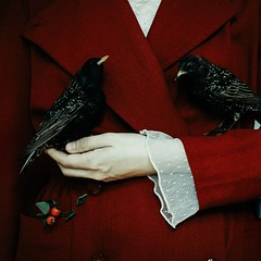 (laura makabresku) Tags: laura makabresku bird autumn photography concept girl hand red fairy tale