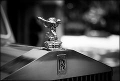 RR ( joaquim nunes) Tags: monocromtico blackwhite preto e branco pessoas arte bw fair gente profundidade de campo leicam8 summicronm35mm cars