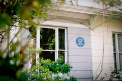 (emilyharriet) Tags: summer london film home window 35mm exterior zenit sylvia sylviaplath plath zenite