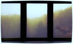 almost like a mountain triptych (forsycja) Tags: autumn mist tree fog nokia haze poland polska warsaw windowview okno jesień mgła drzewa nokian800