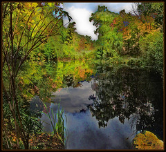 Autumn Pond: Dark Reflection. Explore Oct 14, 2012 #490 (Tim Noonan) Tags: blue autumn trees sky orange toronto black colour reflection green texture nature leaves yellow rock clouds digital photoshop reeds dark pond highpark colours natureza explore shining mosca hypothetical vividimagination thegalaxy artdigital greenscene shockofthenew stickybeak sharingart maxfudge awardtree maxfudgeawardandexcellencegroup daarklands magiktroll exoticimage digitalartscene netartii bewiahn vividnationexcellencegroup