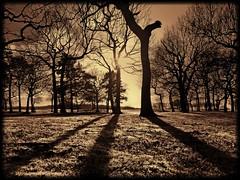 ThREE SHADOWS (singed) (kenny barker) Tags: winter sunset bw monochrome lumix scotland shadows dusk falkirk bonnybridge roughcastle landscapeuk panasoniclumixgf1 welcomeuk kennybarker