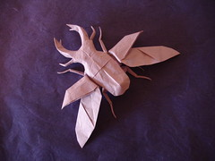 Flying Stag Beetle - Diagrammed Version (shuki.kato) Tags: bug paper insect flying wings origami stag beetle fold complex kato shuki lucanus cervus