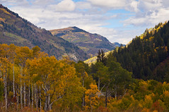 Colorado Bound (BamaCam) Tags: fall landscape rockies colorado aspens