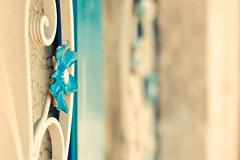 Corfu gate (→ yskan) Tags: vintage gate greece corfu lightroom