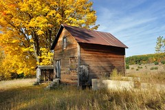 Autumn at the Historic (Martin Basch Farm) Port Oneida, Sleeping Bear Dunes National Lakeshore. (Michigan Nut) Tags: autumn sky usa fall leaves yellow rural landscape countryside nationalpark michigan farm scenic landmark historic sleepingbeardunes johnmccormick portoneida michigannutphotography nikon1635mmf4gedafsvrwideanglezoomlens