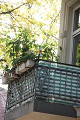 Herbst in Hamburg 2012 (Urban Explorer Hamburg) Tags: hamburg laub herbst natur bltter bume altona 2012 herbstlaub goldenerherbst