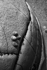 Moeraki Boulders, Koekohe Beach, Otago, New Zealand, Feb 2011 (Clia Mendes Photography) Tags: ocean newzealand praia beach animals mar blackwhite playa boulders round animales redondo animais lightshadow rocas rockformations oceano novazelndia blanconegro limpets nuevazelanda rochas lapas 2011 luzsombra brancopreto formacionesrocosas formaesrochosas
