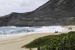 Makapu'u Beach, Oahu, Hawaiian Islands (8896) (rooibusch) Tags: oahu makapuubeach hawaiianislands