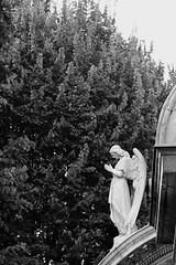 (.:Lintra:.) Tags: blackandwhite bw italy milan blackwhite milano lombardia cimitero monumentale cimiteromonumentale catstarzhinska