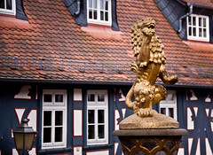 Lion Statue on the top of the Gatehouse Fountain - Idstein, Germany (ChrisGoldNY) Tags: travel sculpture art animals architecture germany deutschland gold europa europe european forsale eu statues viajes german posters lions albumcover alemania bookcover fountains vacations bookcovers albumcovers deutsche gridskipper idstein deutscheland jaunted chrisgoldny chrisgoldberg chrisgoldphoto