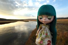 Close your eyes... (jessi.bryan) Tags: trip sunset vacation doll pam yellowstonenationalpark yellowstone blythe wyoming anniversarydoll wingsinflight princessalamode