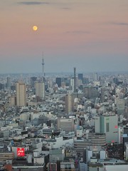 Moon Over Tokyo (Pabo76) Tags: trip vacation japan japanese 日本 2012 일본
