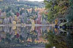 Loch Fascally, Pitlochry (Gordon Haws) Tags: trees reflections perthshire autumncolours electricity pitlochry scottishhighlands perthandkinross hydroelectricity scotlandinautumn beautifulscotland lochfascally lochreflections autumninscotland tummelriver colourfulscotland kinrosshighlandsautumn breathtakingscotland lochfascallyreflections