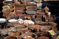 This earth I rise from (3) (Luca Terracciano) Tags: leather islam unesco worldheritagesite morocco fez marocco medina tanning fes feselbali elbali فاس faselbali