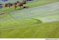 Wegweisende Landschaft   /   Groundbreaking scenery (to.wi) Tags: autumn landscape herbst landwirtschaft wiese landschaft kreisgppingen towi stauferkreis