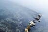 Fiume azzurro (albi_tai) Tags: reflection water river reflex ticino nikon fiume movimento roccia sassi acqua riflessi luce mosso d90 lungaesposizione 21100 sommalombardo lte fiumeazzurro panperduto nikond90 tempilunghi albitai