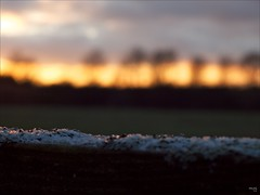 Melting Stripes (fixedfocallength) Tags: leica snow lumix bokeh panasonic summicron sunsetlight gf1 mft leicasummicronm50mm