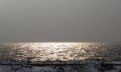 Zonneschijn - Sunshine (naturum) Tags: winter netherlands sunshine amsterdam geotagged gray january nederland januari waterland grauw zonneschijn 2013 uitdam giveusyourbestshot 522013week3 geo:lat=5240967101 geo:lon=504846454