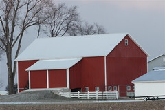 Bank Barn (beccafromportland) Tags: red barn barns indiana redbarn berneindiana adamscountyindiana bankbarn