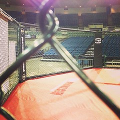 "The calm before the FIREWORKS!! #DestinyMMA #DefendHawaii #WarDoane! • <a style=""font-size:0.8em;"" href=""http://www.flickr.com/photos/89357024@N05/8414185957/"" target=""_blank"">View on Flickr</a>"