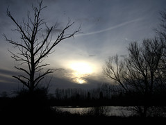 Winter sunset at Thrupp Lake 1 (Maggie @ Abingdon) Tags: winter sunset silhouette landscape radleylakes thrupplake earthtrust