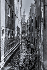 Water street Venice cityscape