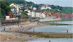 Oh! I Do Like To Be Beside the Seaside (Welsh Gold) Tags: uk tour devon basingstoke paignton wildebeeste dawlish railtours 72128 73107 73962 73963 1z73