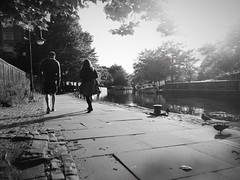 stroll (vfrgk) Tags: people blackandwhite bw water monochrome birds walking canal couple shadows pigeons duo streetphotography sunny streetlife streetscene sidewalk urbannature romantic relaxation stroll tranquil atmospheric urbanlife urbanphotography strolling loveisintheair narrowboats urbanfragment canalboats treeshade streetsnap walkingintothesun