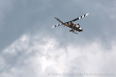 AH-1 Cobra Attack Heliocopter - 2016 Thunder Over Michigan Air Show (mikelynaugh) Tags: thunderovermichigan airshow tom2016 2016tom tom ypsilanti michigan mi airshowphotos photos photosof mikelynaugh lynaugh aviation yankeeairmuseum willowrunairport willowrun ah1 cobra attackhelicopter helicopter