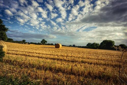 #Ireland #pocket_ireland #SonyAlphasClub #sonya77ii #SonyImages #discoverni #autumn