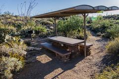 Tanque Verde Ridge trail (locklan78) Tags: saguaronationalpark saguarorinconmountaindistrict tanqueverderidgetrail