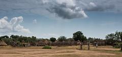 Mingi Gate, Dus Village (Sebastian Humphreys) Tags: africa kara gate end omovalley ethiopia mingi omorivervalley karatribe southwestethiopia wwwomochildorg dusvillage